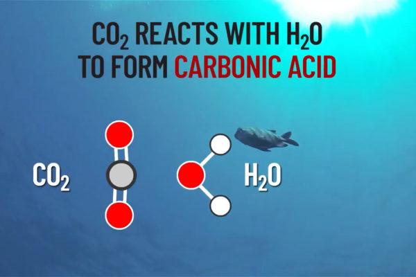 carbonic-acid